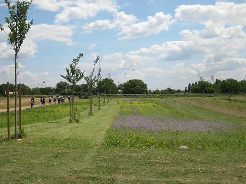 Parc de Lilas 9