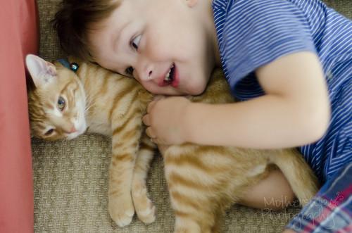237:365卢卡斯喜欢小猫