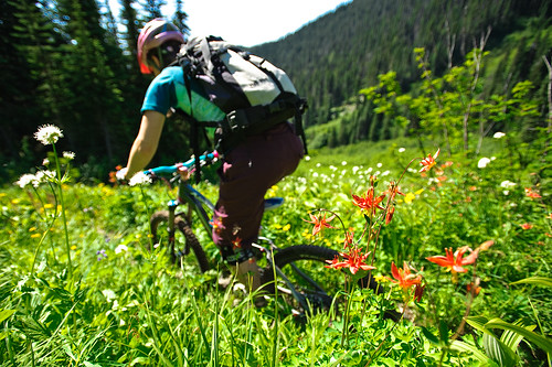 Tenquille Trail Alpine ride Aug 12 2011 -9