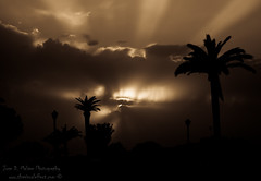 Sunbeams B+W (thevisualeffect.com (JD Malave)) Tags: ocean sunlight beach outdoors spain rota tamron2870mm canont2i