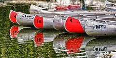 Coulter Bay Canoes (Marvin Bredel) Tags: lake reflection water reflections nationalpark canoe wyoming jacksonhole grandtetonnationalpark jacksonlake coulterbay marvin908 marvinbredel