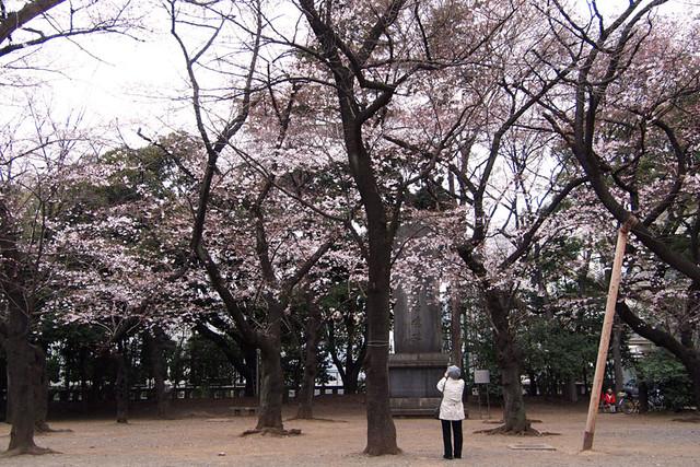 110403_114723_靖国神社