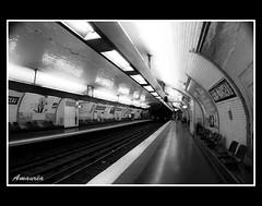 Nas profundidades do Metro (amaurea2310) Tags: paris france underground subway metro mtro francia pars almamarceau
