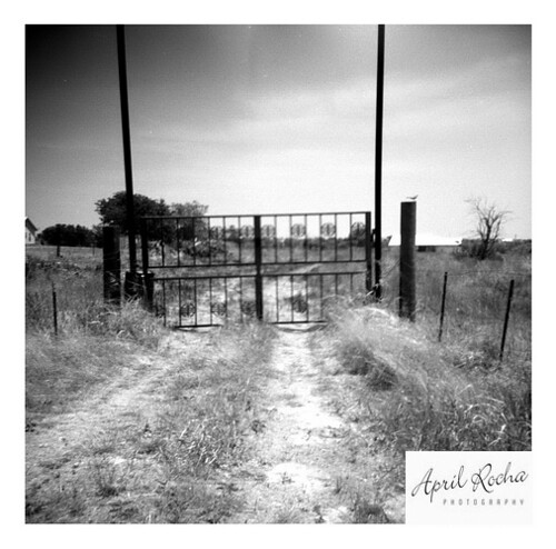 Rocha_April_Gate_to_Nowhere1