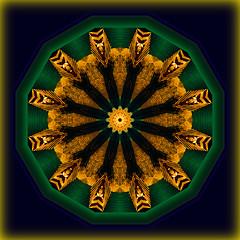 Kolazi 010 (Katarina 2353) Tags: film geometric analog photography nikon image geometry dream shapes vivid kaleidoscope illusion multiple hallucination form kaleidoscopic multiplication hallucinatory nikonf401s hypnogogic katarinastefanovic katarina2353