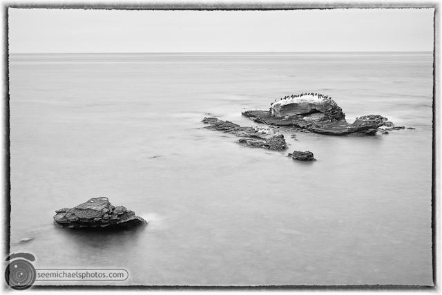 Bird Rock 82311 © Michael Klayman-006