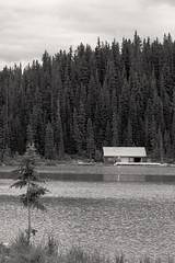 Cabin on the Lake (sylvanbobcat) Tags: travel canada northamerica banff lakelouise banffnationalpark