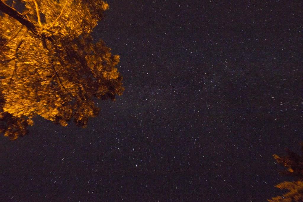 Milky Way + Light