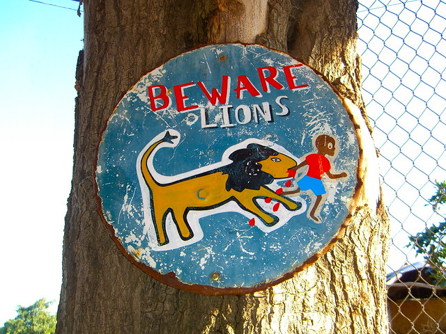 Beware of the Lions
