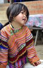 08_LAO69590032 (TC Yuen) Tags: vietnam sapa hmong terracefarming locai