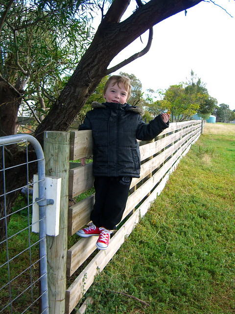 Remi climbing