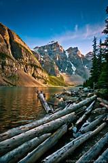 Driftwood - Moraine Lake (nailbender) Tags: lake canada sunrise logs albertacanada morainelake nailbender