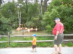 Salisbury Zoo with Pop