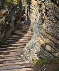 The path from Athabasca Falls.