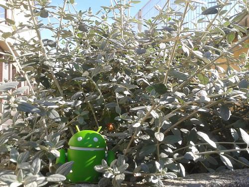 Androidografia Barakaldo 253