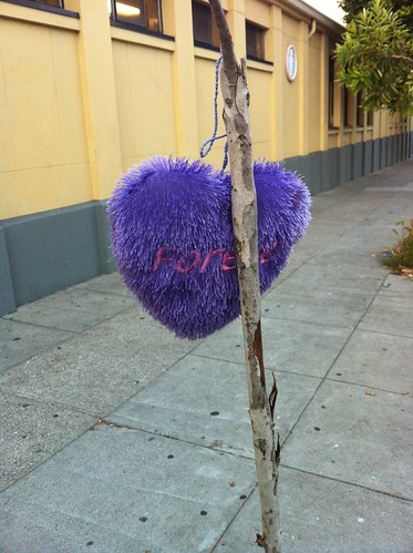 Purple heart tree