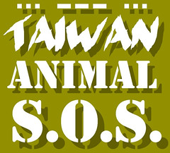 Helping animals in Taiwan