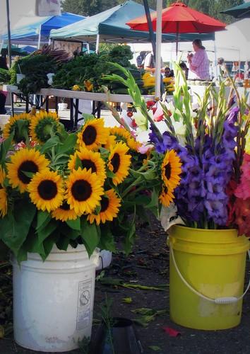 09/10/11 Farmer's Market by roswellsgirl