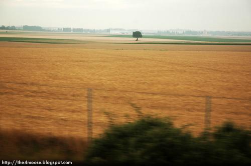 Eurostar 9016 - France