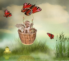 First Flight ! (rubyblossom.) Tags: sky plants baby 3 water clouds reeds wings pond basket butterflies prince frog fairy software ripples carry topaz makeitinteresting
