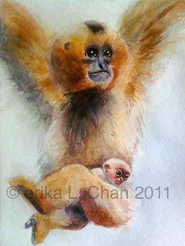 Gibbons 2011