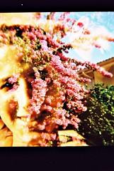 (Uka wonderland) Tags: flowers selfportrait lomo lomography dianaf