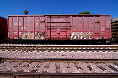 COLT.45  UTAH (TRUE 2 DEATH) Tags: railroad streetart art train graffiti utah graf trains railcar spraypaint boxcar railways railfan freight freighttrain colt45 benching freighttraingraffiti benchingwithbobthebencher