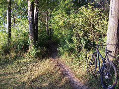 Trailside (MtnBkr2009) Tags: sunset beach nature outdoors lakeerie mountainbike trail mountainbiking singletrack