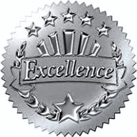 True Excellence - Level 1
