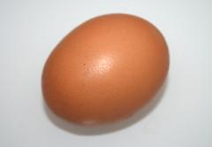 10 - Zutat Ei