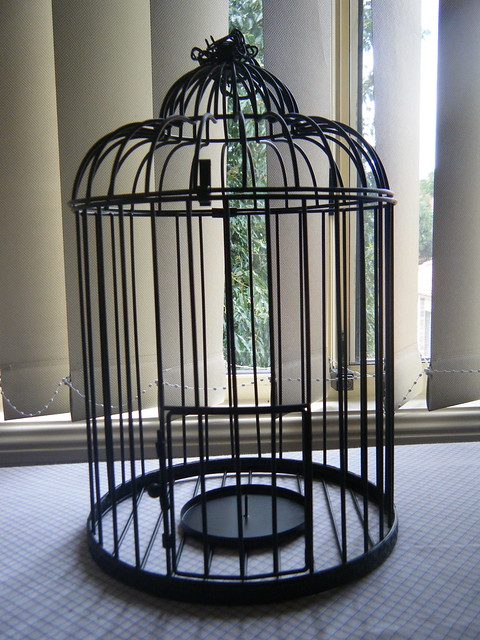Wishing Well Birdcage Before