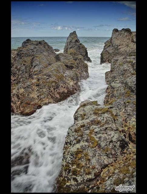 Coolum Rocks