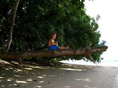 Pantai Kupa Kupa (leivischem [federleicht]) Tags: sea vacation history beach coral indonesia island volcano holidays snorkel pacific hiking wwii spice dive traditions diving hike adventure maluku pulau indonesien benteng ternate halmahera molukken tidore dukono tobelo bobale
