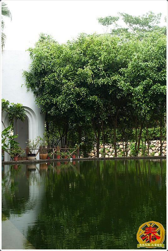 三義棕梠泉景觀餐廳a (9)