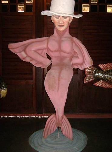 Boto cor-de-rosa