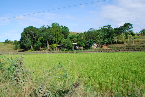 Bushman In The Philippines: Santo Nino, Part 1