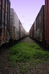 Got Green? (All Seeing) Tags: up yard unionpacific railyard reefer csx uprr armn reefers csxt buildingamerica
