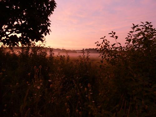 sunrise 009