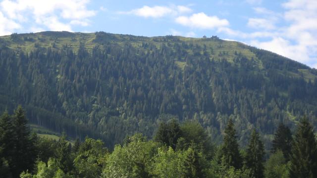 Kronberg (1663 m)
