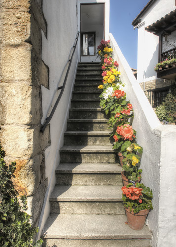 Stairs and flowers. Santillana del Mar. Spain. Escaleras y flores.