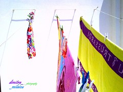 colour my life (dimitra_milaiou) Tags: summer sun colors lines island design living nokia wire europe colours wind hellas greece pegs parallel andros cyclades katerina clothepins dimitra x6 clothpins      milaiou