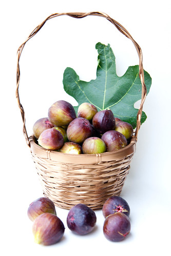 Basket full of figs, just picked from my garden