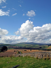 The Cheviots (stephen.lewins) Tags: northumberland the cheviots hedgehope thecheviot breamishvalley crawleytower