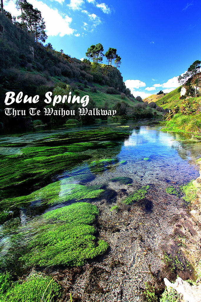 Crystal Clear Blue Spring