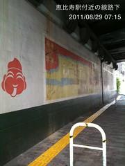朝散歩(2011/8/29 7:05-7:25): 線路下