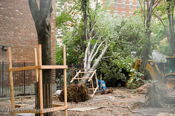 RYALE_Hurricane_Irene_Aftermath_NYC-8