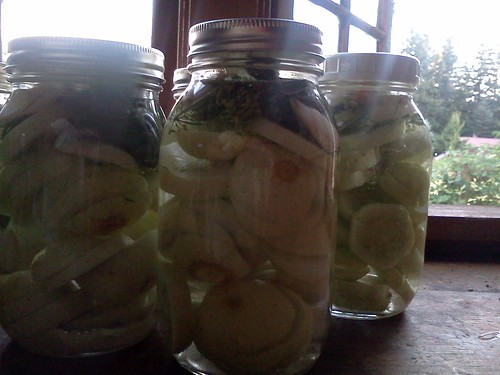 quarts of pickles