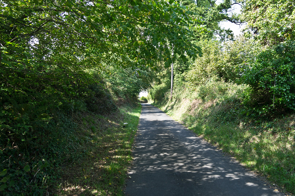A Walk In The Country - View From Lehaunstown Road