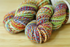 WSK's Gavin's Rainbow on Handspun