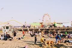 (chesney anne) Tags: santa people wheel pier sand walk board ferris monica roller lives coaster intermingling